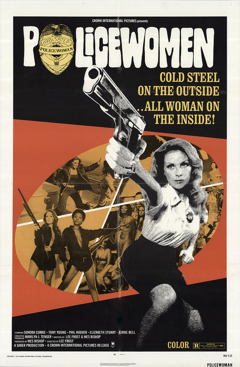 Policewomen movie poster